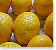 Meyer Lemons.